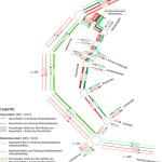 Project Ludwigsburg: Traffic Distribution